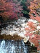 四国の温泉を愛しているのだ