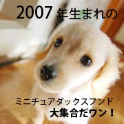Mダックス同級生集合!(2007年度)