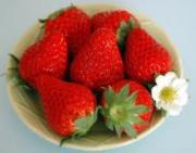 イチゴ♪苺♪いちご♪