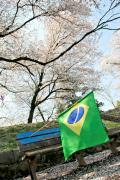 ブラジルタウン