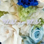 薔薇ブログ