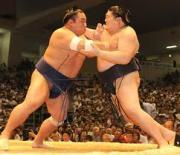 財団法人日本相撲協会