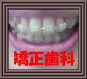 矯正&審美歯科