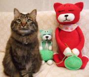 あみねこ☆猫ブログ