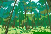 森林浴気分で癒ら優ら