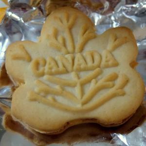 カナダに留学!