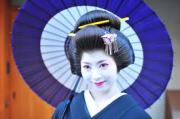 芸者(GEISHA GIRLS)