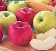 りんご・リンゴ・林檎