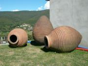 フリウリワインとバローロ・バルバレスコ