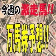 第41回ダービー卿CT 万馬券情報!!