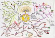 マインドマップ (Mind Map)