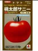 トマトを育てよう!