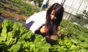 農業人☆家庭菜園☆趣味☆野菜☆