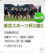 東京スポーツ杯2歳S攻略