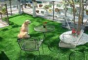 GardenDesign&Exterior