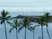 ハワイアンライフ