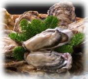 牡蠣食べたい・・・