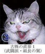 猫軍団によるドル円予想
