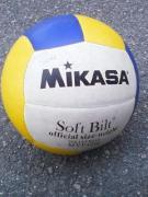 日本・海外のバレーボール