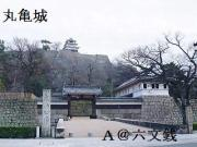 丸亀(香川県)