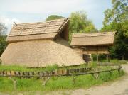 登呂遺跡(静岡県)、静岡市立登呂博物館