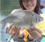 へら鮒釣り