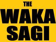 THE WAKASAGI(ワカサギ釣り)