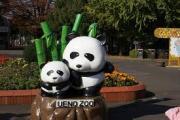 上野動物園のパンダ(大熊猫)