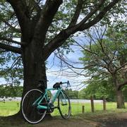 旅する自転車