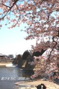 山口県東部〜広島県南部