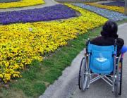 車椅子での旅行は、ここがオススメ。