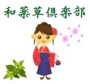 美容と健康に優れた薬草茶