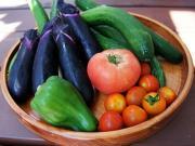 楽しい家庭菜園