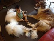 赤ちゃんと犬♪♪