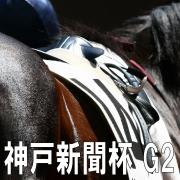 神戸新聞杯2012 ブログまとめ