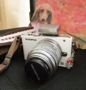 ワンコ(ペット)と一緒に「カメラ女子気分」