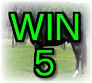WIN5競馬予想2013