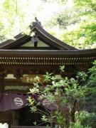 古河公方と鎌倉公方