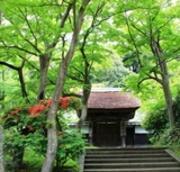 鎌倉の四季♪
