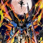 SEED&SEED DESTINY HDRM &アストレイ