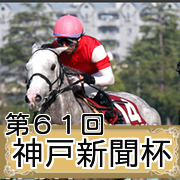 第61回神戸新聞杯