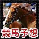 競馬予想(JRA)