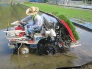 農業・農学の歴史