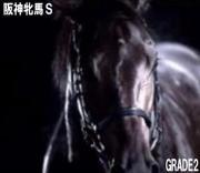 阪神牝馬S(2018)