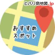 バリ島旅行の日本語ガイド
