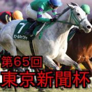 第65回 東京新聞杯(G3)