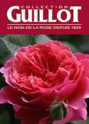 ギヨー(Guillot)のバラ♪