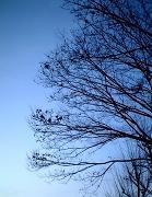 季節の写真