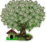 MONEY、資産運用、お金の増やし方