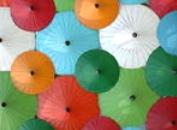 傘(雨具等)